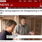 BBC Breakfast's Mike Bushell tries pigeon racing
